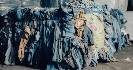 Cellulose fiber is obtained from old garments and jeans