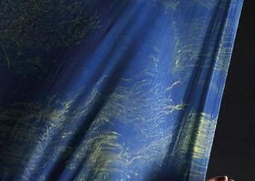 Seaweed fabric