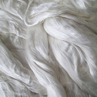 These seaweed fibers will become what is SeaCell fabric